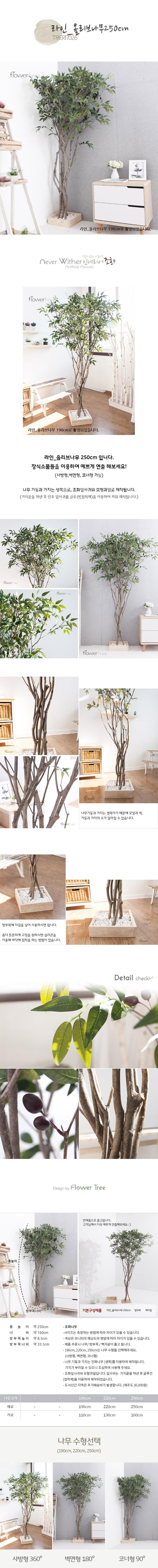 라인_올리브나무 250cm FREOFT - 플라워트리, 298,600원, 조화, 카네이션(조화)