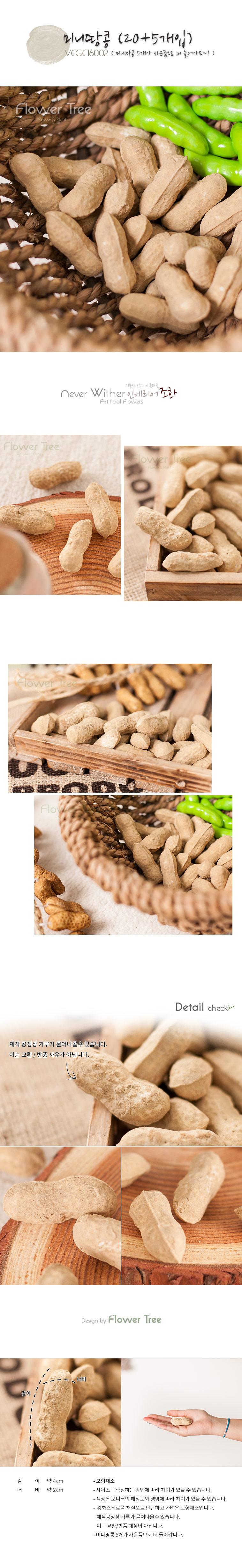 미니땅콩(20개입) [모형] - 플라워트리, 3,600원, 미니어처, 음식