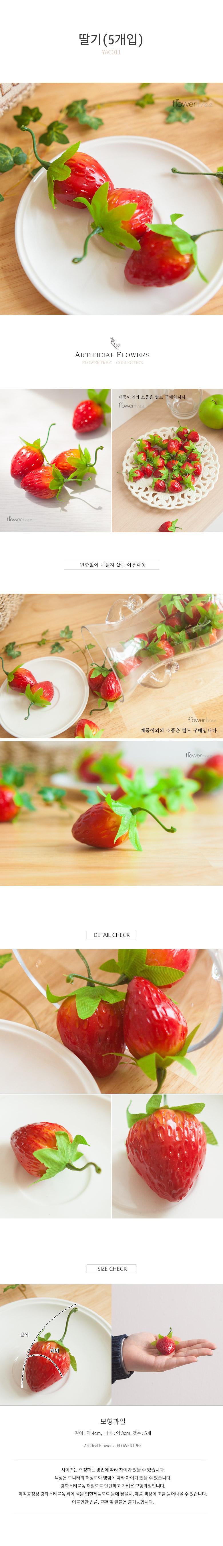 딸기(5개입) FOFDFT 모조과일 모형 빵 채소 - 플라워트리, 1,080원, 미니어처, 음식